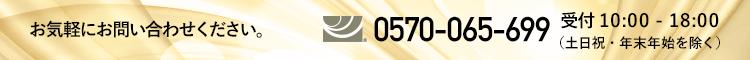 0570-065-699