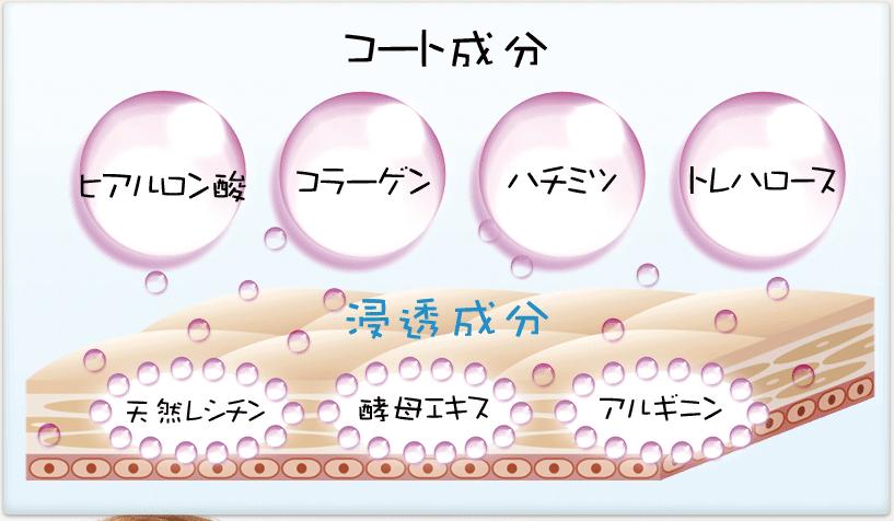 コート成分 ヒアルロン酸 コラーゲン ハチミツ トレハロース 浸透成分 天然レシチン 酵母エキス アルギニン