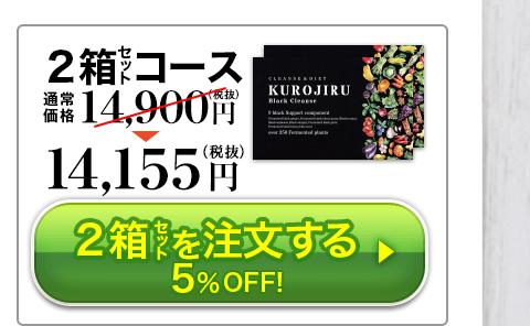 2個セット 14,155円
