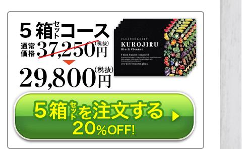 5個セット 29,800円