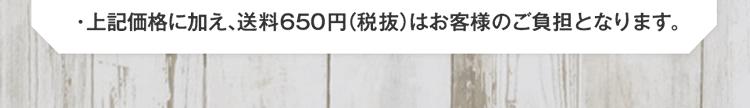 ※上記価格に加え、送料650円(税抜)はお客様のご負担となります。