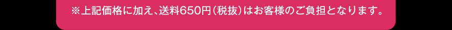 上記価格に加え、送料650円(税抜)はお客様のご負担となります
