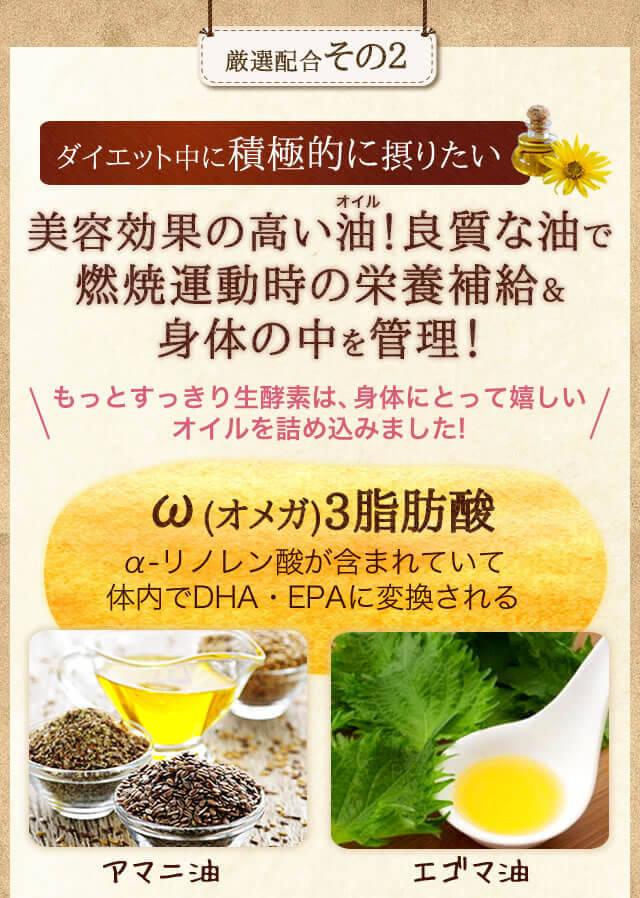 厳選配合その2 美容効果の高いオイル!良質な油で燃焼運動時の栄養補給&身体の中を管理! オメガ3脂肪酸
