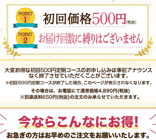 初回価格500円 安心の返金保証付き こんなチャンスは今だけ!