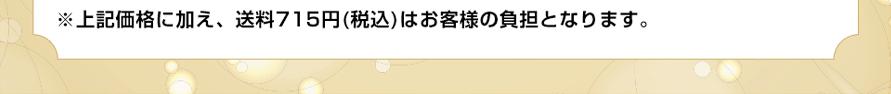 ※上記価格に加え、送料710円(税込)はお客様の負担となります。