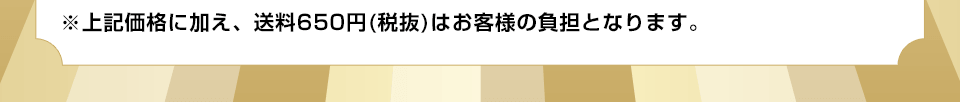 ※上記価格に加え、送料650円(税抜)はお客様の負担となります。